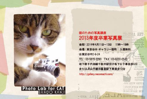 1_large_1.jpg