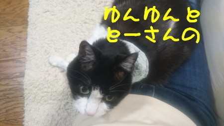 DSC_0279_1.jpg