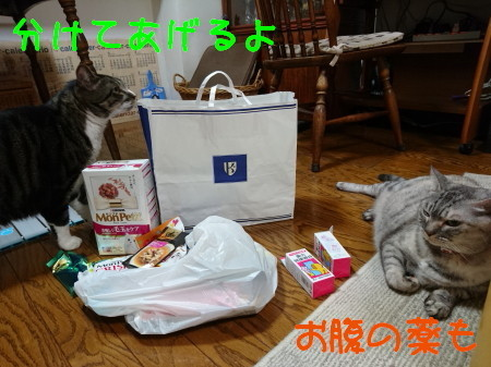 DSC_0703_a.jpg