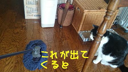 DSC_9622_b.jpg