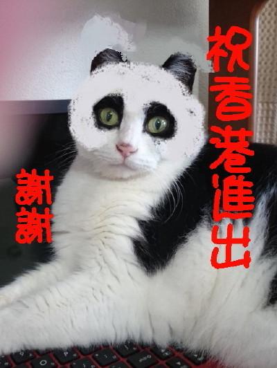パンダ.1_1.jpg