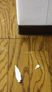 壁紙剥がし競技