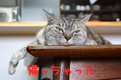IMG_3036_a.jpg