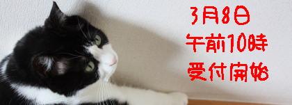 IMG_3960_a.jpg