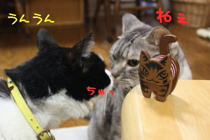 IMG_4231.1_a.jpg