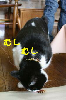IMG_4425_1.jpg