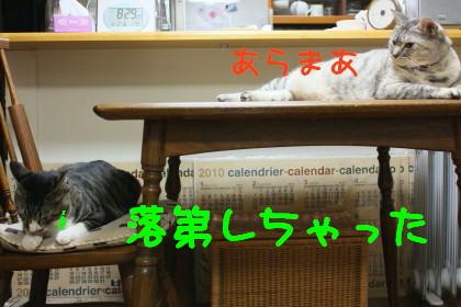 IMG_4555_a.jpg