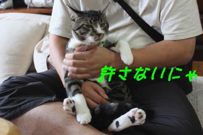 IMG_5174_1.JPG